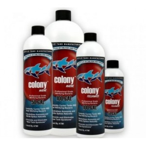 Colony ATM 237ml