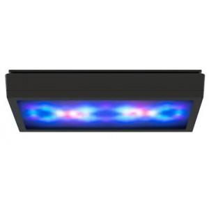 Radion XR30G5 BLUE LED Light